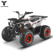 125cc Cheap ATV for sale Hunter 125 with EPA ECE