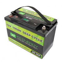 Customizable lifepo4 battery 12V 100AH charging with solar panel