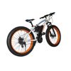 Fat Tires 350W 48V Range 40KM Mountain Bicycle Electric Bike Fashion 2.0 Electric Bicycle