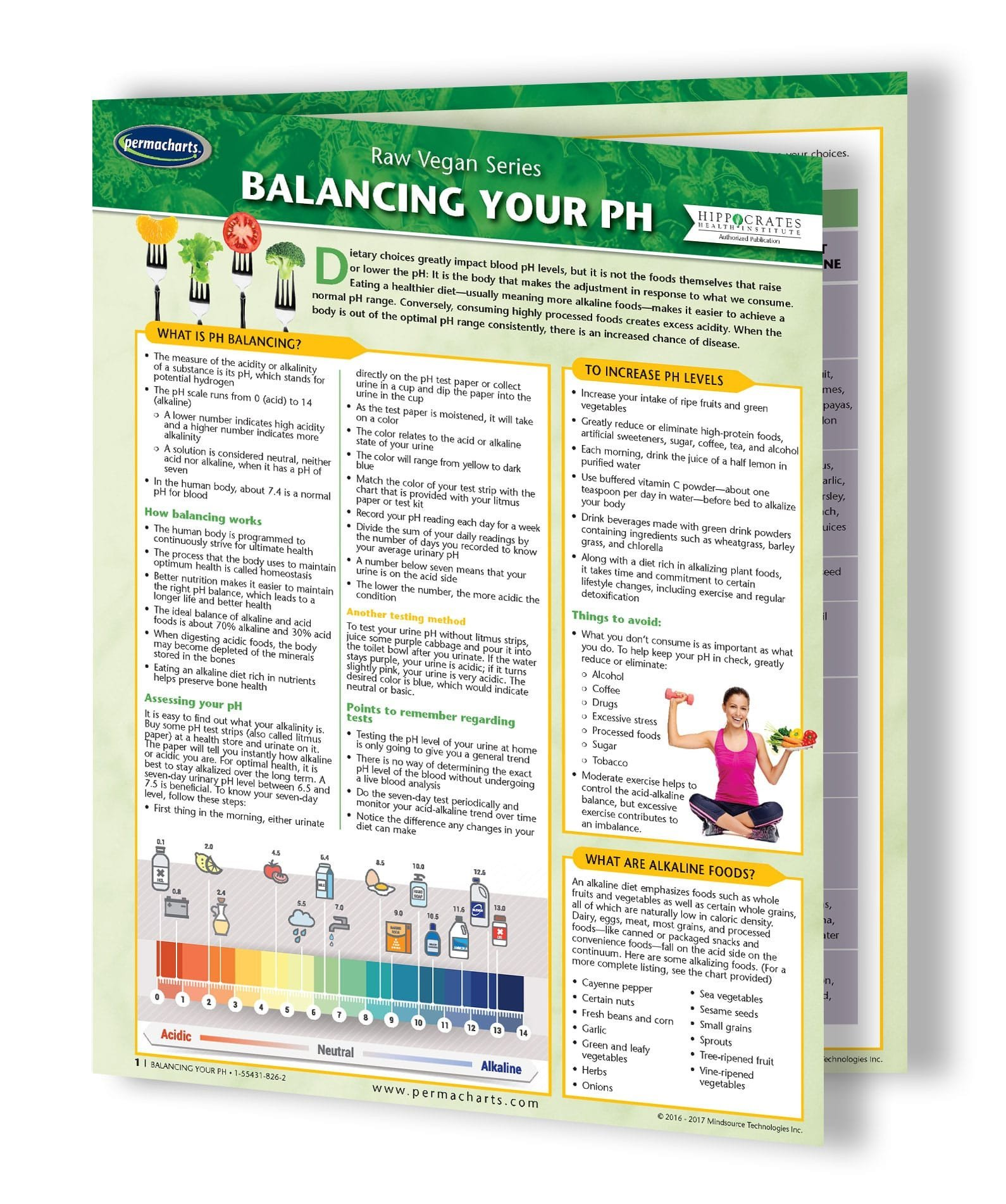 """Body Alkaline Guide and Food Chart - Balance your ph Levels - 4-page 8.5"""" x 11"""" Laminated Quick Reference Guide"""
