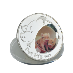Hot Sale Cheap Silver Metal 3d Plated Challenge Pig Zodiac New Year Souvenir Coins With Case For Souvenir