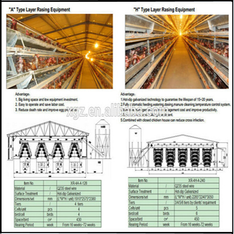 China Egg Chicken House Design For Layers / Chicken Cages