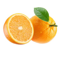 New fresh orange fruit specific