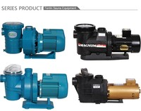 Professional manufacture swimming pool water pump