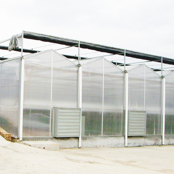 Commercial Polycarbonate Farming Greenhouse With Low Cost - Buy Commercial  Greenhouse,Polycarbonate Greenhouse,Low Cost Greenhouse Product on