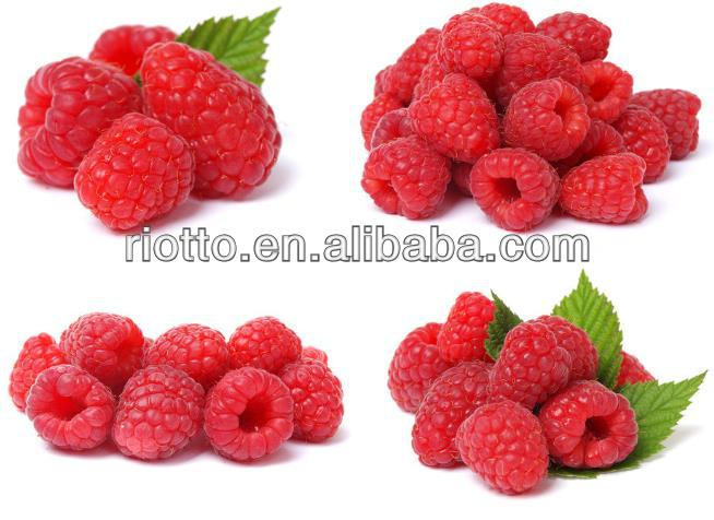 High Quality Palmleaf Raspberry Fruit Extract 10:1