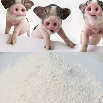 Pigs' Favourite Gmp Plant 4% Vitamin Mineral Premix For Pig - Buy Vitamin  Mineral Premix,High Quality Vitamin Mineral Premix,Vitamin Premix For
