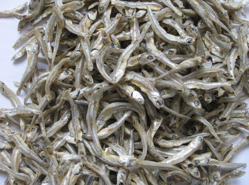Cá cơm khô to
