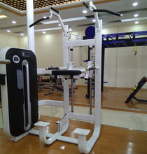 Commercial Use Body Shaper Exercise Machine life fitness equipment gym machine/Assisted Dip/Chin