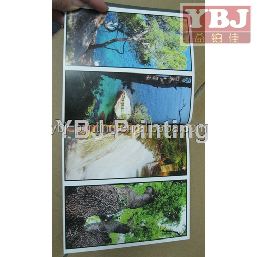 photo book materials binding