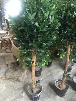 artificial plants 5ft height buxus laurel bay trees for indoor