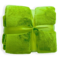 Green Queen Size Soft Wholesale Blanket Factory China