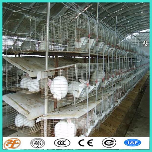 Galvanized Wire Mesh Panels For Breeding Rabbit Cage - Buy Breeding ...