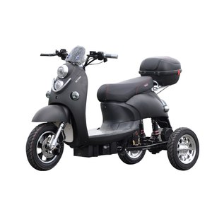 3 Wheels Adult 800W 2 Seat Germany Tricycle Electric Trike Scooter With EEC Certificate
