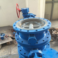 High Performance Stainless Steel Gear Opreated Double Flange Extended Stem Butterfly Valve