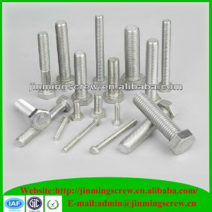 Stainless Steel Roll Bolt