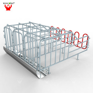 Wholesale Galvanized pipe sow cages stall Pig Gestation Crates