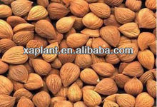 Almond nuts flour powder for sale prices