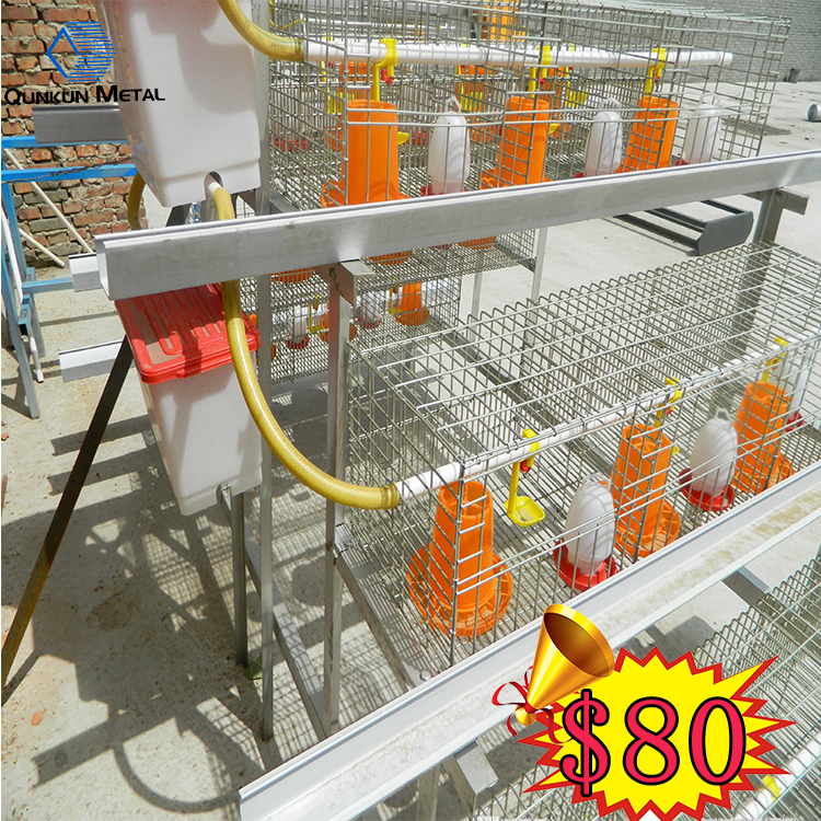 waterproof bird cage cover/bird cage wrought iron/foldable bird cage
