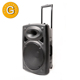 custom sound system 15 inch woofer altavoz wireless bt usb dj trolly speaker