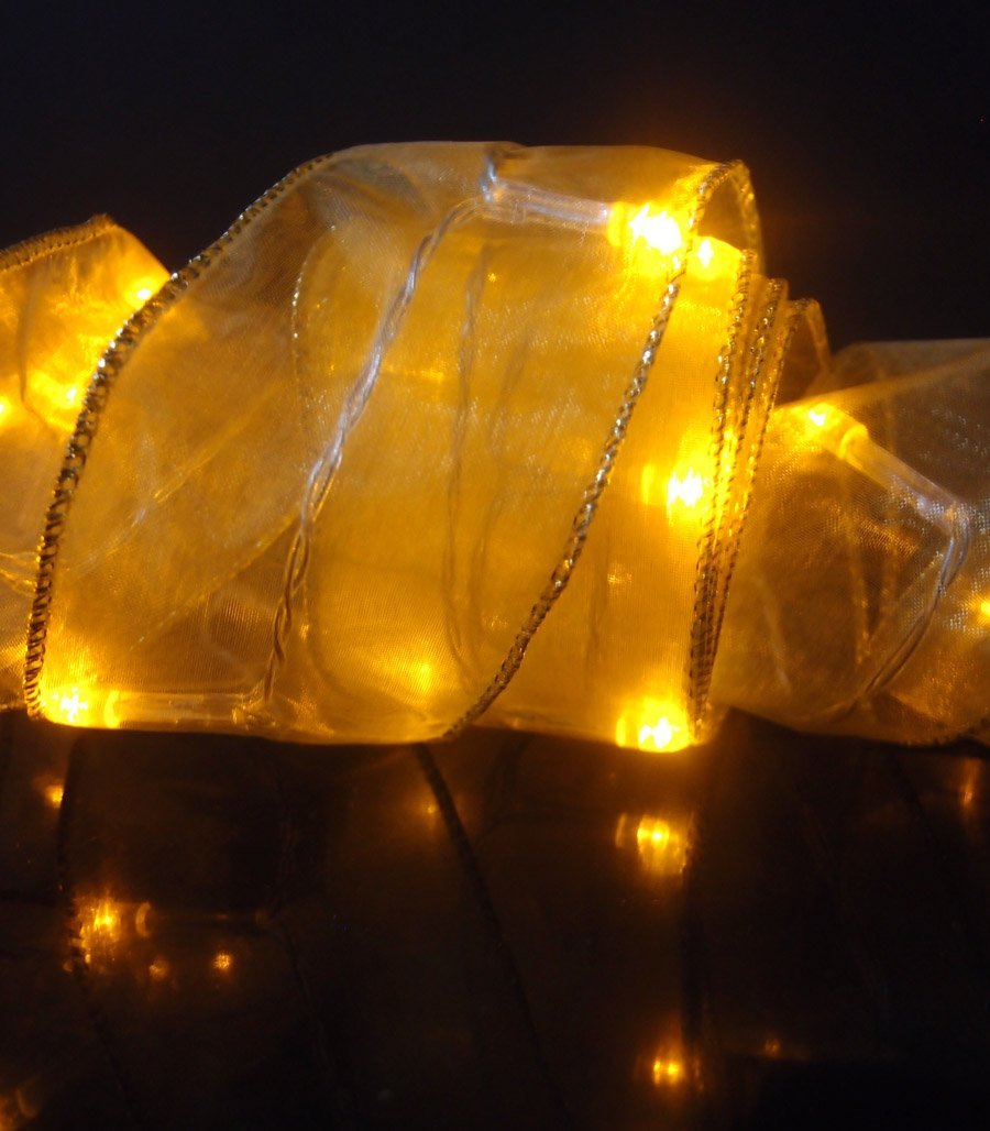 Fantado 30 LED Amber Organza Ribbon Light, 8.5 FT Battery Operated by PaperLanternStore