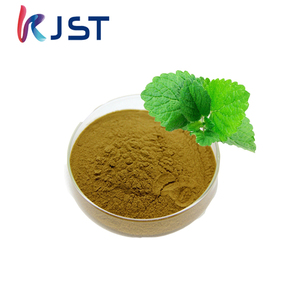 2018 Natural pure dried mint powder mine extract