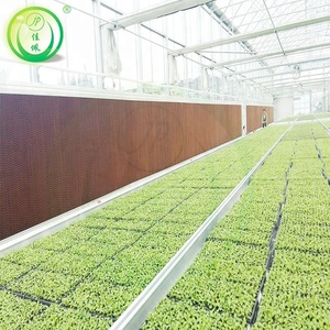 Made in china high quality low cost industrial cooling pad greenhouse for agriculture