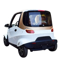 Factory direct sale 4 seats electric car OEM Price