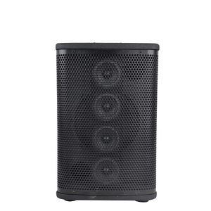 Accuracy Pro Audio RS10 10 Inch 350W Passive 8 ohm Stage Monitor Wooden Speaker