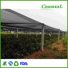 Factory manufacture various green sun shade net price