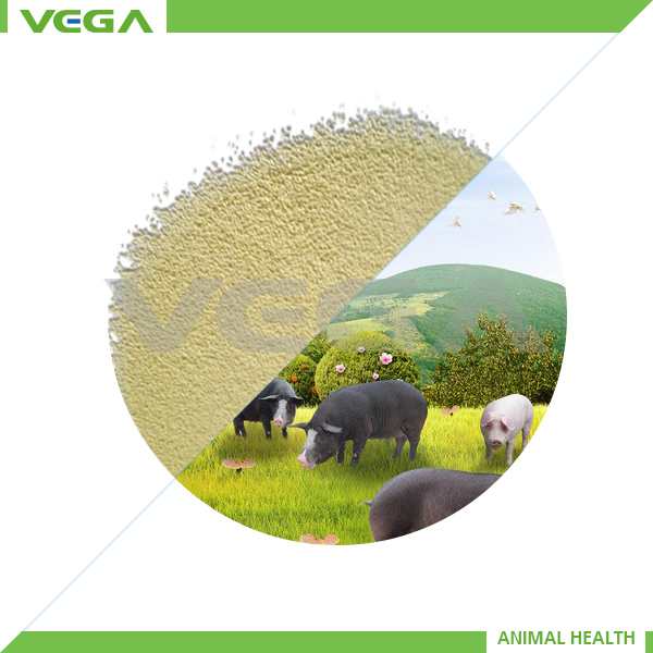 Raw Material L-lysine HCl Animal Feed/2014 New Products L-lysine Hcl