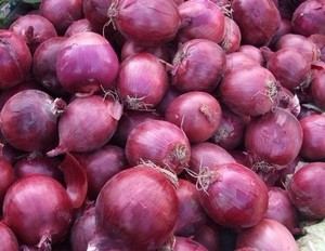 Red onion/ Round fresh red onoins/Fresh red big onion