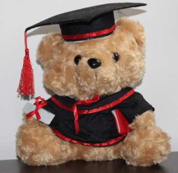 2019 University Teddybeer/Graduation Soft Toy