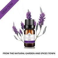 organic lavender oil essential 100% pure