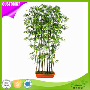 High quality UV protected PE outdoor realistic fake lucky bamboo plants