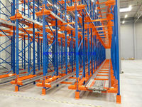 Warehouse factory FIFO storage racks / economical high density radio shuttle vehicle racks