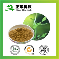 Kosher Certified Organic Product Black Cohosh Extract Triterpenoid Saponins 2.5%