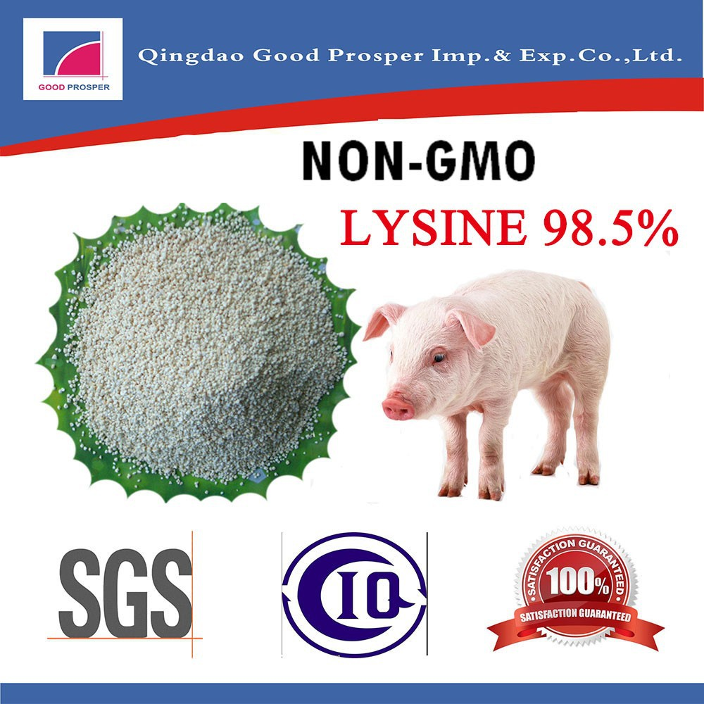 Lysine HCl 98% ( promote peristalsis and absorb of animals intestines )
