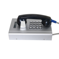 Anti-Vandal & Weatherproof Campus Emergency Button Landline Telephone