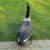 Wholesale garden wild plastic goose decoy for hunting