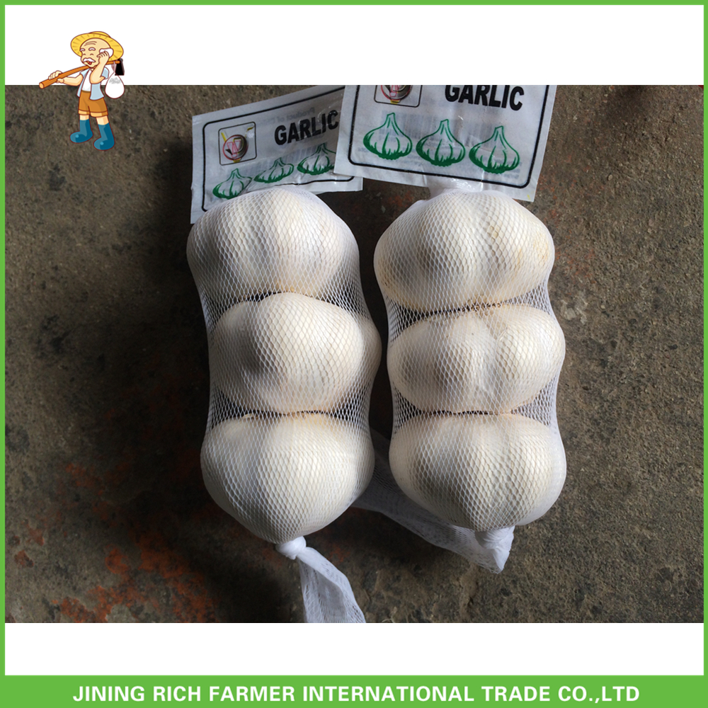 Good Price And Best Quality Jining China Fresh Pure White Garlic 3P Small Packing In Carton 5.0CM