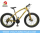 alloy fat tire bike /4.0 big tyre /bicycle FAT -TJSS020