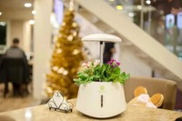2017 gift choice smart indoor garden,led lights plant grow hydroponic systems pot kits
