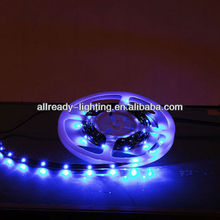 DC12V 24v CE&RoHs SMD 3528 Led Flexible strip waterproof IP68 19.2w 240led/m red yellow blue green white warm white