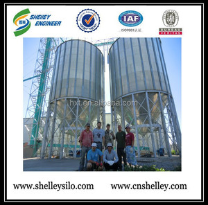 Feed Mill Used Bulk Corn Storage Steel Grain Silo for Sale