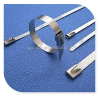 7.9*800MM Self-locking Stainless Steel Cable Ties