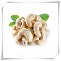 cashew nut kernel large white pieces