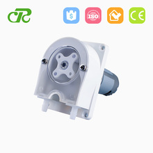 China Electric And Professional Supplier And Tubing And Mini Liquid Distribution Peristaltic Pump With 12V DC Motor For Beauty