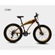 26 Inch New Style Big Tyre 7 Speed Beach Cruiser Bicycle/Fat Snow Mountain Bike/Fat Bicycle with Steel Frame and Disc Brake