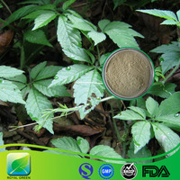 High Purity Natural Gynostemma P.E.